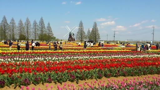 2013_04_13_12_48_45.jpg